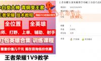 """淘宝虚拟蓝海品""""王者荣耀攻略"""",单天300-500利润,实操复盘总结!"""